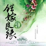 A Mistaken Marriage Match 1: Record of Washed Grievances 错嫁良缘之洗冤录 by Qian Lu (HE)
