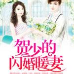CEO's Sudden Proposal/ Flash Marriage Deep Love/ He Shao De Shanhun Nuan Qi 贺少的闪婚暖妻 by 秦页 Qin He (HE)