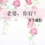 Hello, Wife! 老婆, 你好! by 月下蝶影 Yue Xia Die Ying (HE)