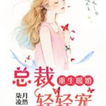 Your Turn to Chase After Me/ Chong Sheng Nuan Hun Qing Chong Qi 重生暖婚轻宠妻 by 柒月凌然 Qi Yue Ling Ran