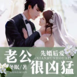 Love After Marriage / Marriage Before Love 先婚后爱: 老公很凶猛 by 冬眠 Dong Mian